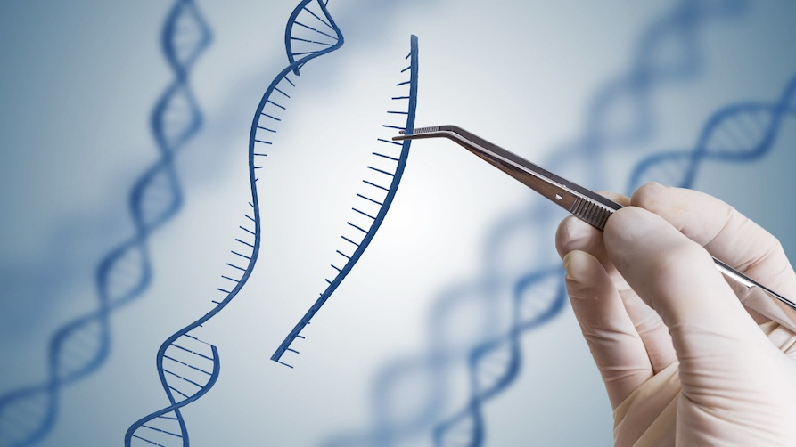 gene therapy-3-60-893-502-1524122461